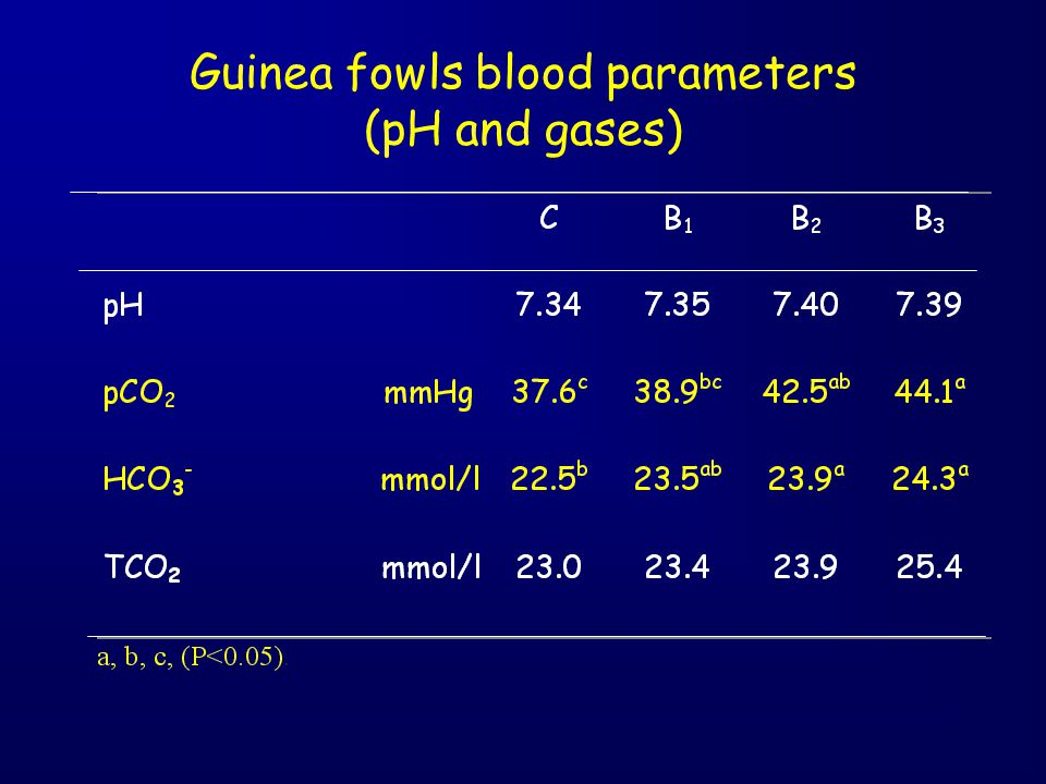 Guinea fowls blood parameters (pH and gases)