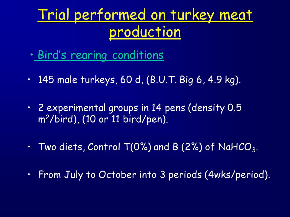 Trial performed on turkey meat production