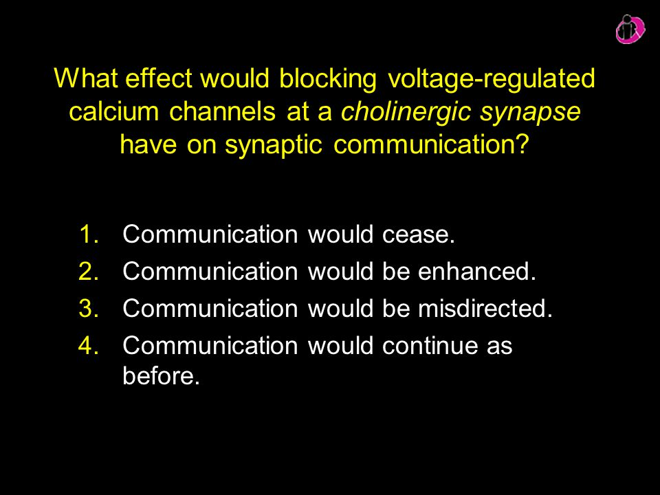 What effect would blocking voltage-regulated calcium channels at a cholinergic synapse have on synaptic communication
