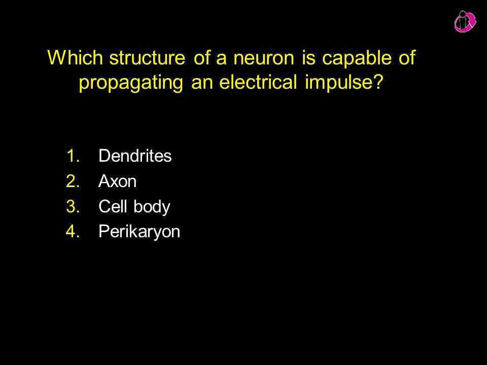 Which structure of a neuron is capable of propagating an electrical impulse