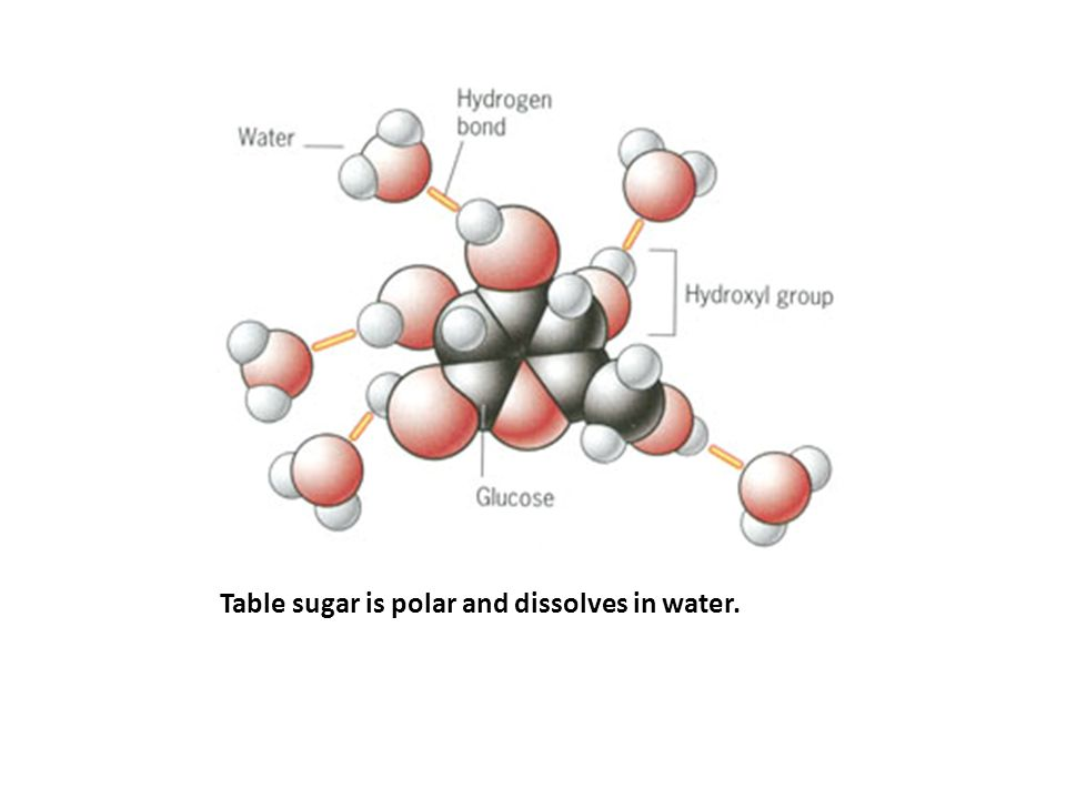 Table sugar is polar and dissolves in water.