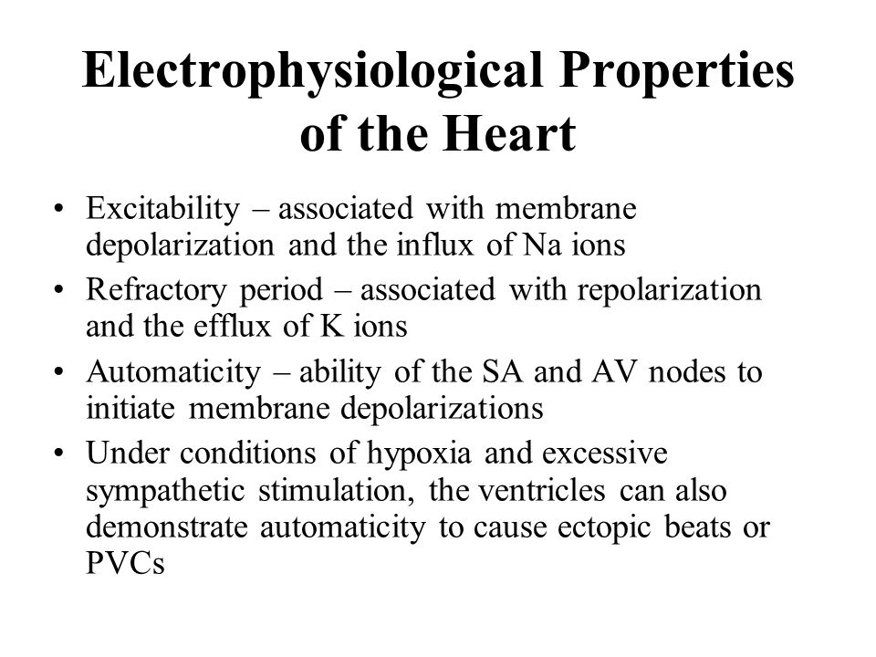 Electrophysiological Properties of the Heart