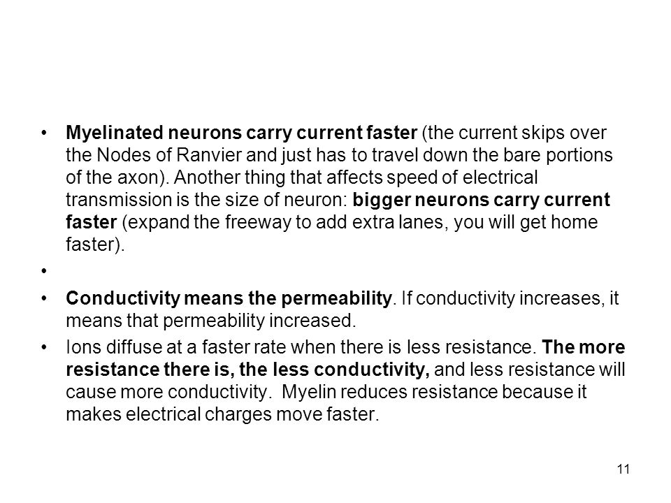 Myelinated neurons carry current faster (the current skips over the Nodes of Ranvier and just has to travel down the bare portions of the axon). Another thing that affects speed of electrical transmission is the size of neuron: bigger neurons carry current faster (expand the freeway to add extra lanes, you will get home faster).