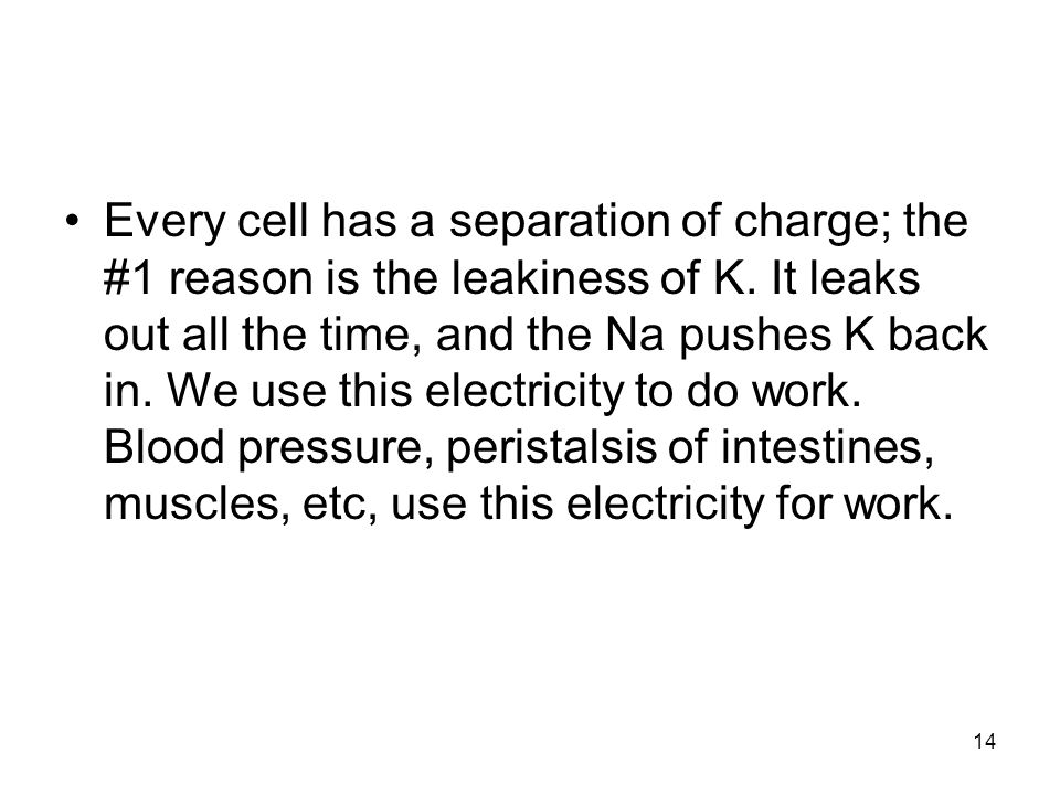 Every cell has a separation of charge; the #1 reason is the leakiness of K.