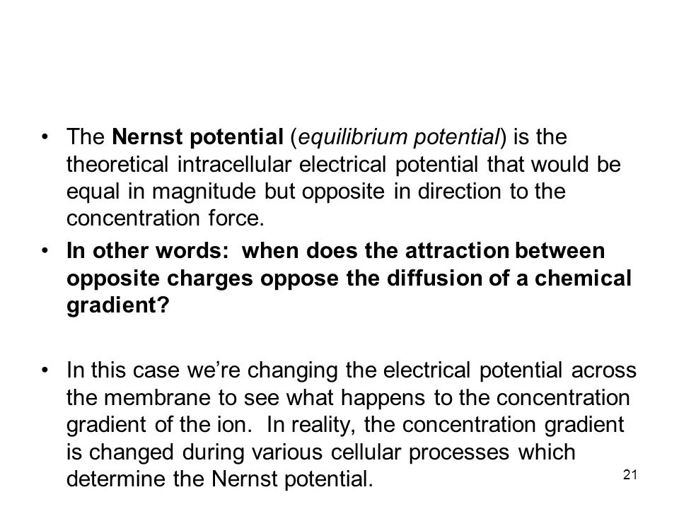 The Nernst potential (equilibrium potential) is the theoretical intracellular electrical potential that would be equal in magnitude but opposite in direction to the concentration force.