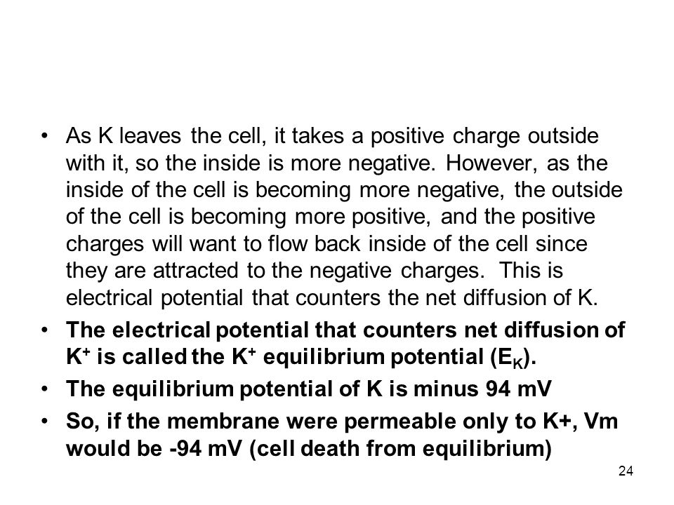 As K leaves the cell, it takes a positive charge outside with it, so the inside is more negative. However, as the inside of the cell is becoming more negative, the outside of the cell is becoming more positive, and the positive charges will want to flow back inside of the cell since they are attracted to the negative charges. This is electrical potential that counters the net diffusion of K.