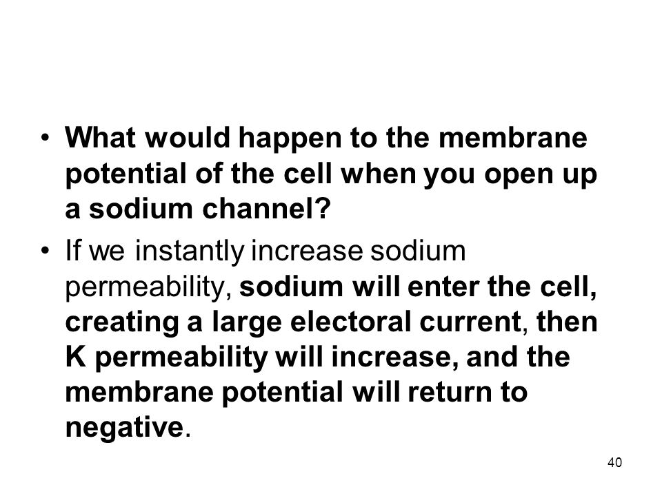 What would happen to the membrane potential of the cell when you open up a sodium channel