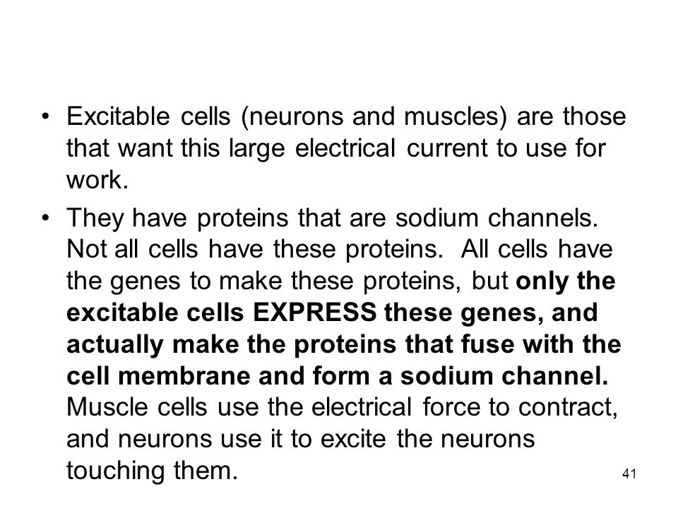 Excitable cells (neurons and muscles) are those that want this large electrical current to use for work.