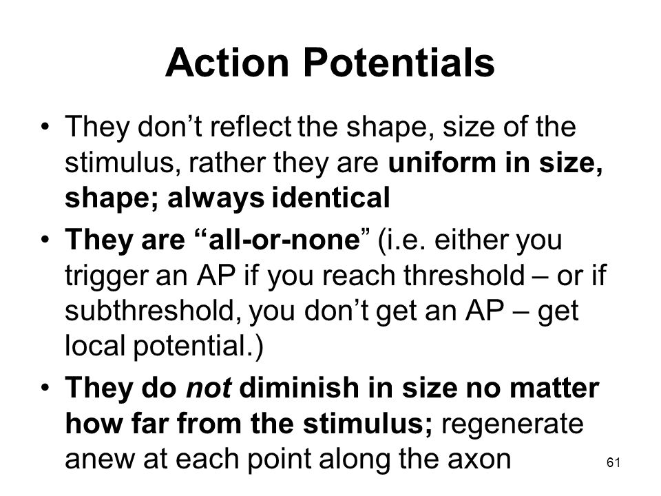 Action Potentials They don't reflect the shape, size of the stimulus, rather they are uniform in size, shape; always identical.