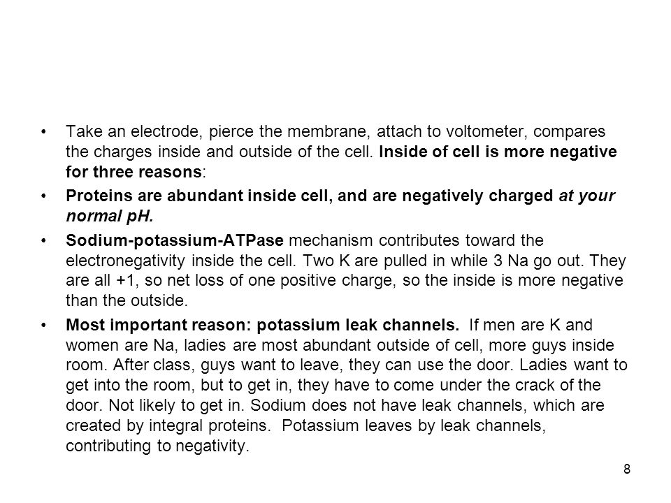Take an electrode, pierce the membrane, attach to voltometer, compares the charges inside and outside of the cell. Inside of cell is more negative for three reasons: