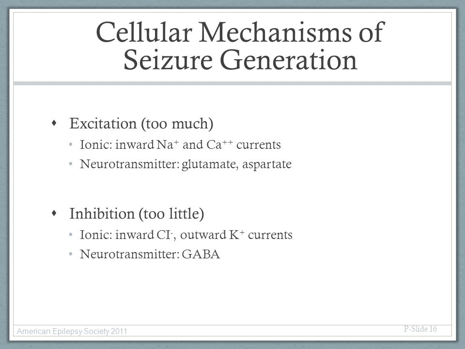 Cellular Mechanisms of Seizure Generation