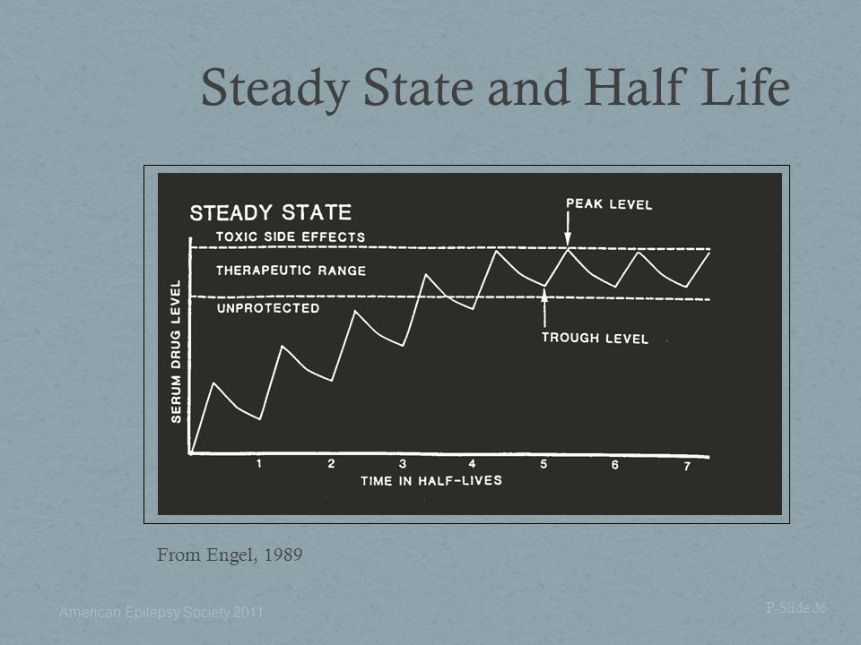 Steady State and Half Life