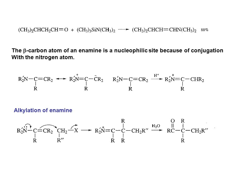 The b-carbon atom of an enamine is a nucleophilic site because of conjugation