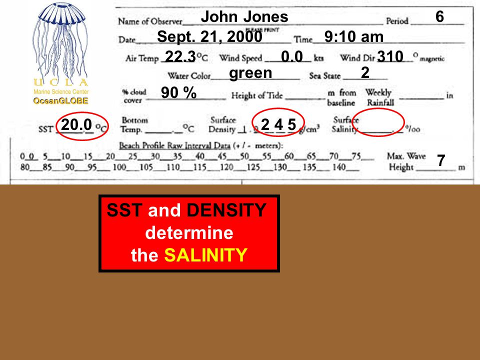 SST and DENSITY determine the SALINITY