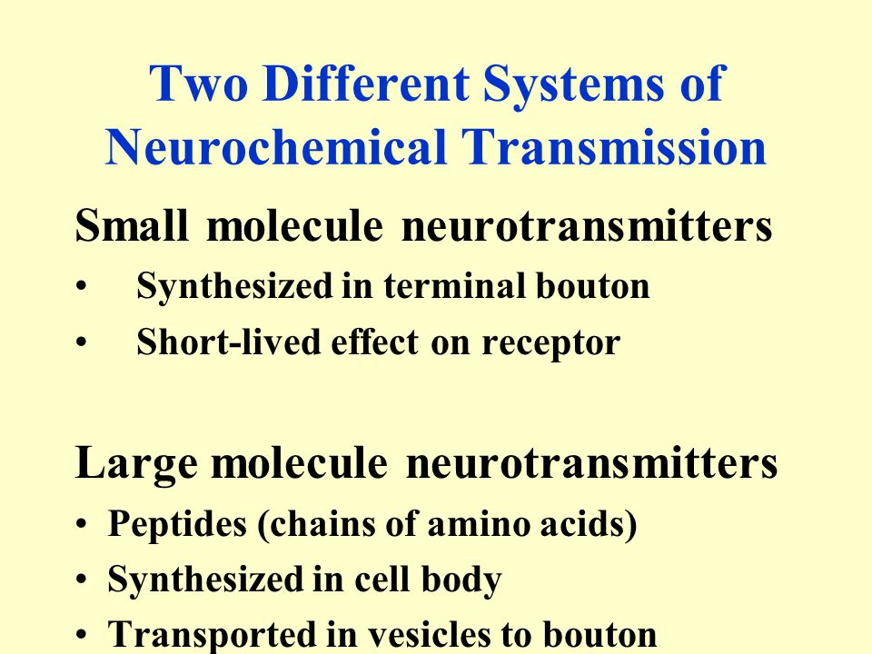 Two Different Systems of Neurochemical Transmission