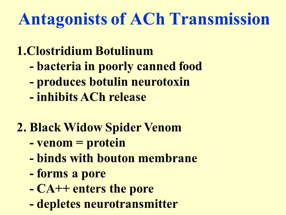 Antagonists of ACh Transmission