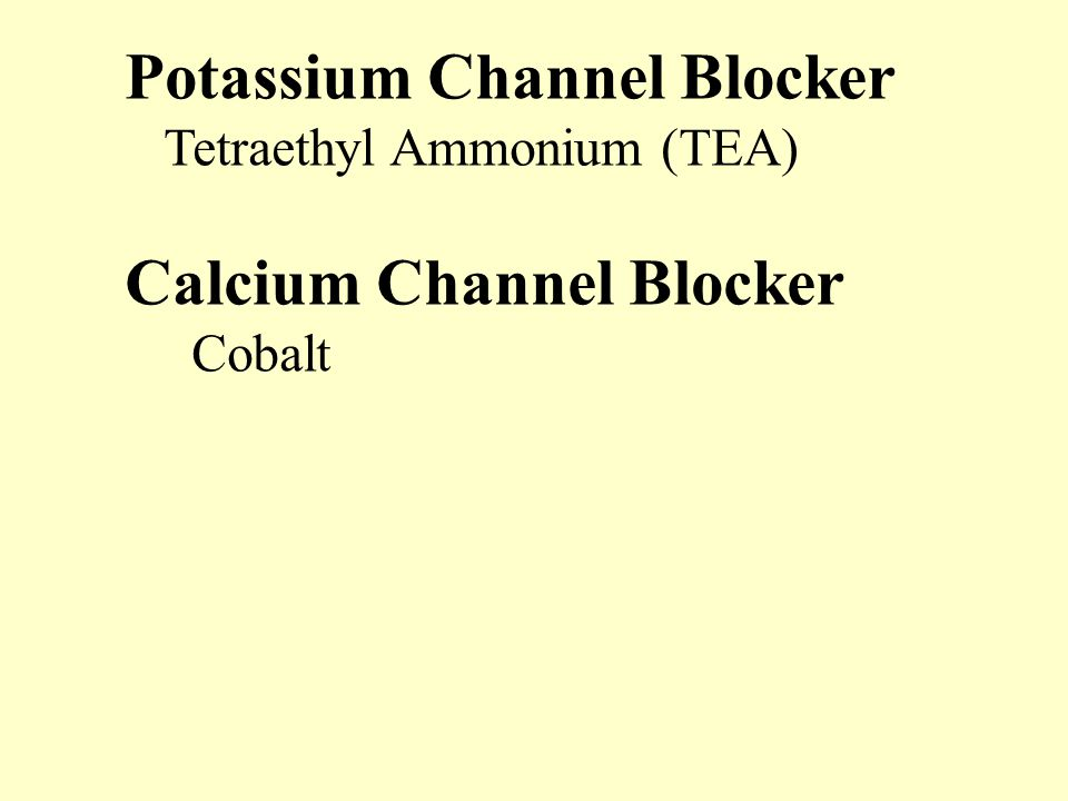 Potassium Channel Blocker