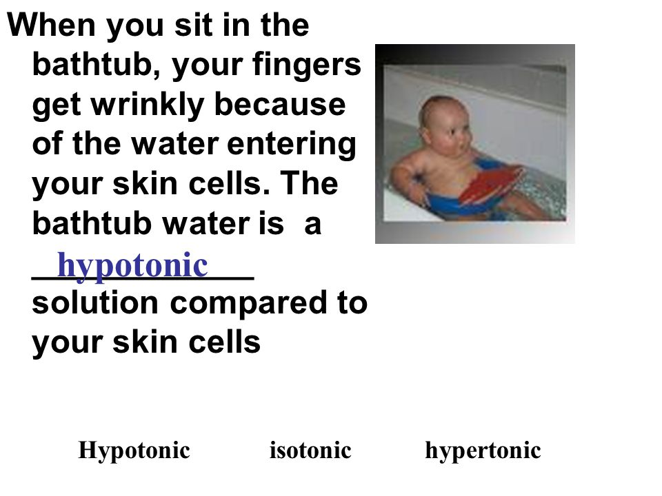 When you sit in the bathtub, your fingers get wrinkly because of the water entering your skin cells. The bathtub water is a ____________ solution compared to your skin cells