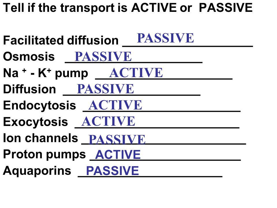PASSIVE PASSIVE ACTIVE PASSIVE ACTIVE ACTIVE PASSIVE
