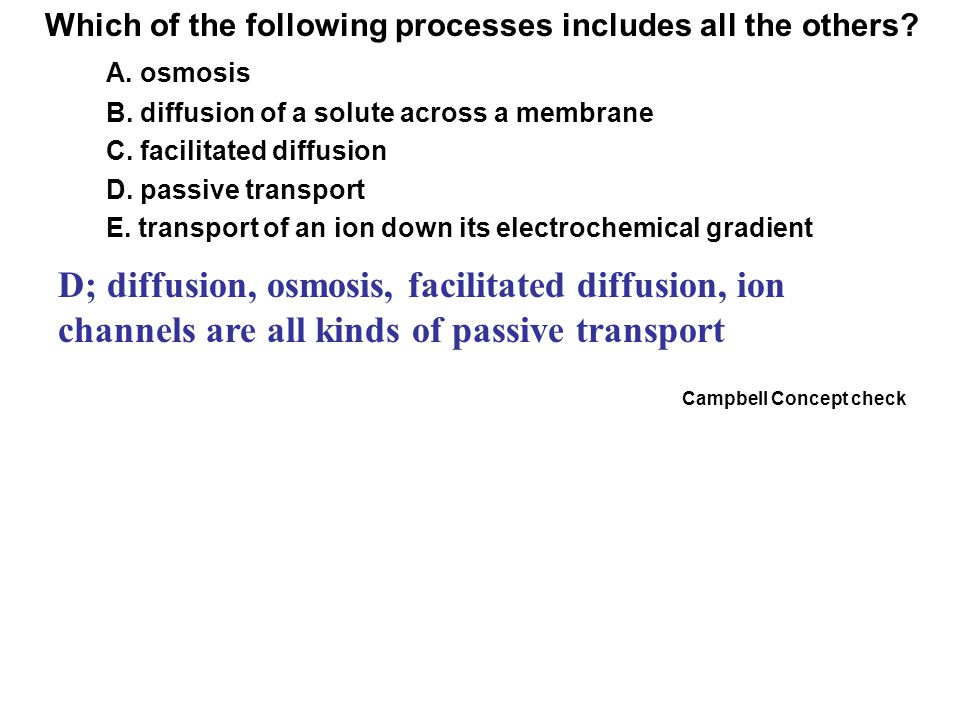 Which of the following processes includes all the others