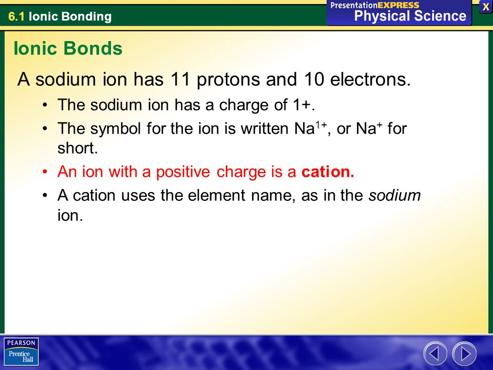 A sodium ion has 11 protons and 10 electrons.