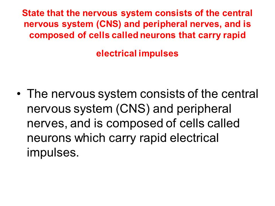 State that the nervous system consists of the central nervous system (CNS) and peripheral nerves, and is composed of cells called neurons that carry rapid electrical impulses