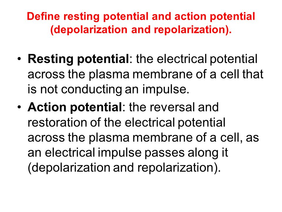 Define resting potential and action potential (depolarization and repolarization).