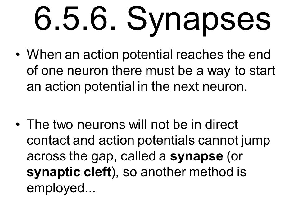 6.5.6. Synapses When an action potential reaches the end of one neuron there must be a way to start an action potential in the next neuron.