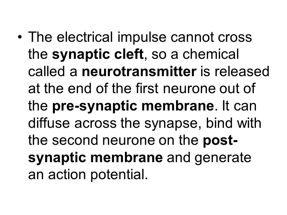 The electrical impulse cannot cross the synaptic cleft, so a chemical called a neurotransmitter is released at the end of the first neurone out of the pre-synaptic membrane.