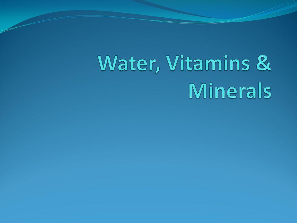 Water, Vitamins & Minerals