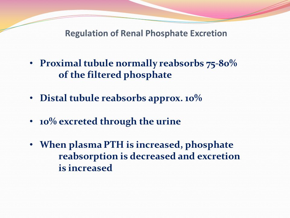 Regulation of Renal Phosphate Excretion