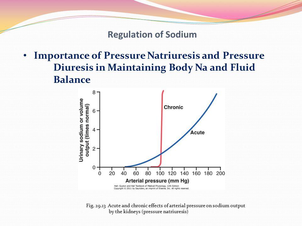 Importance of Pressure Natriuresis and Pressure