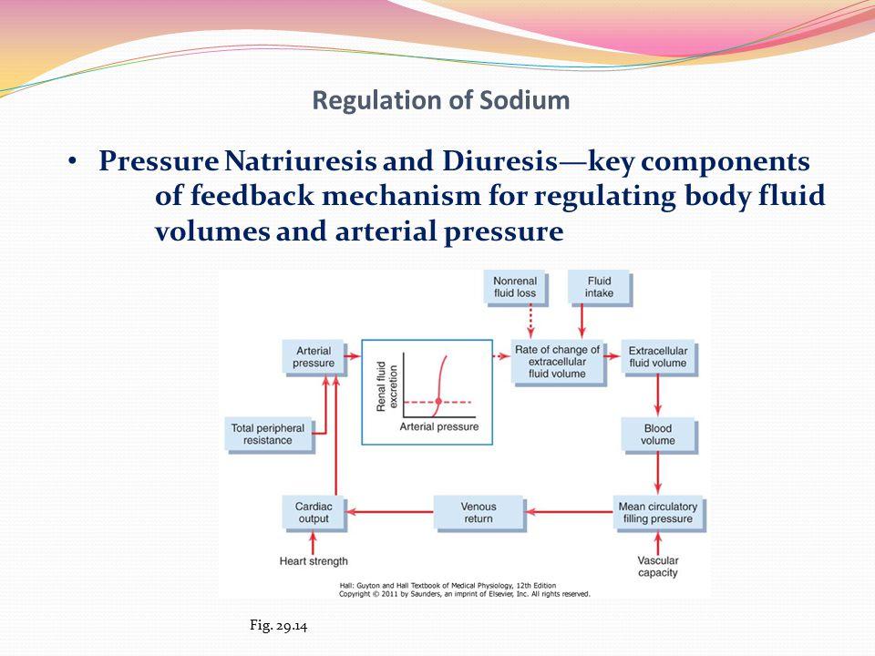 Pressure Natriuresis and Diuresis—key components