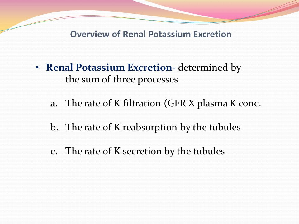 Overview of Renal Potassium Excretion