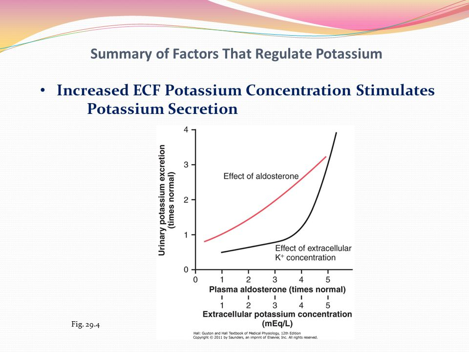 Summary of Factors That Regulate Potassium