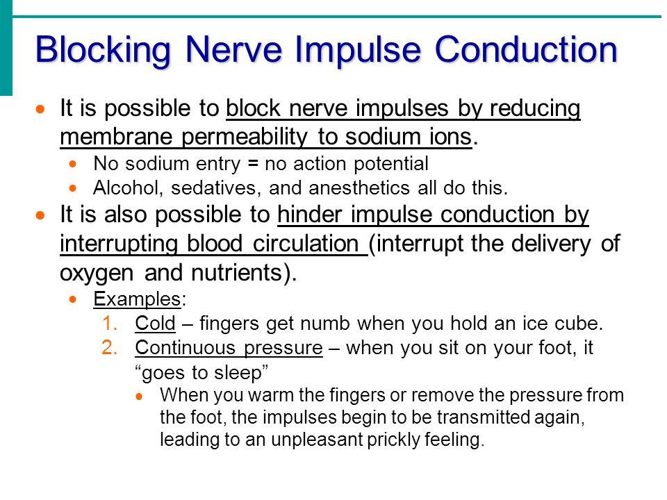 Blocking Nerve Impulse Conduction
