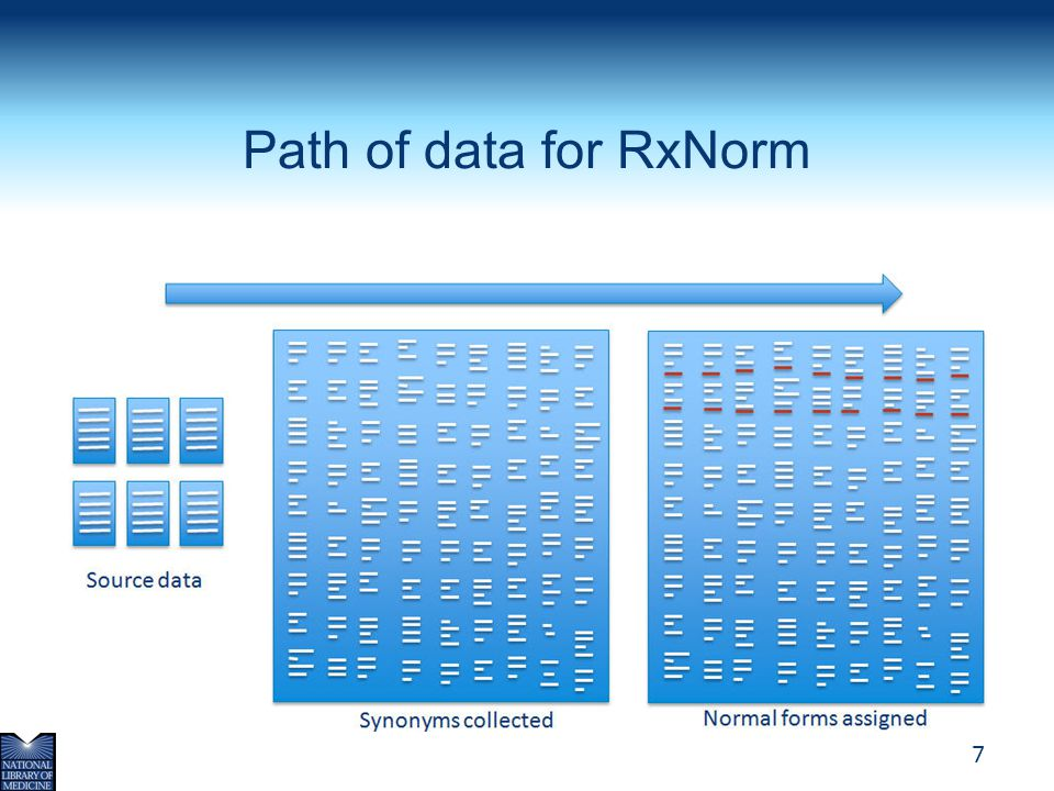 Path of data for RxNorm