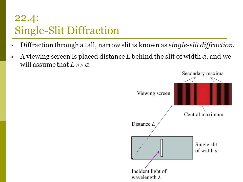22.4: Single-Slit Diffraction