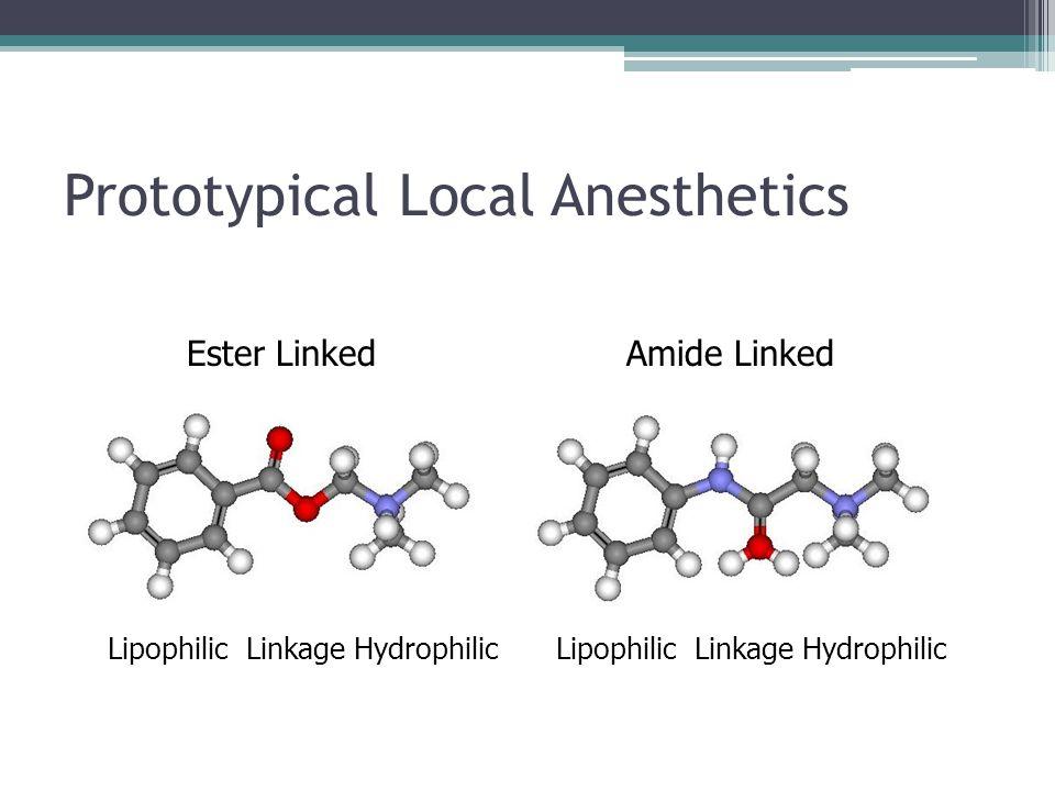 Prototypical Local Anesthetics