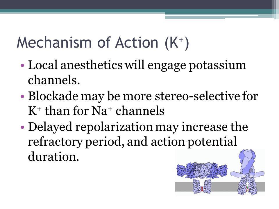 Mechanism of Action (K+)
