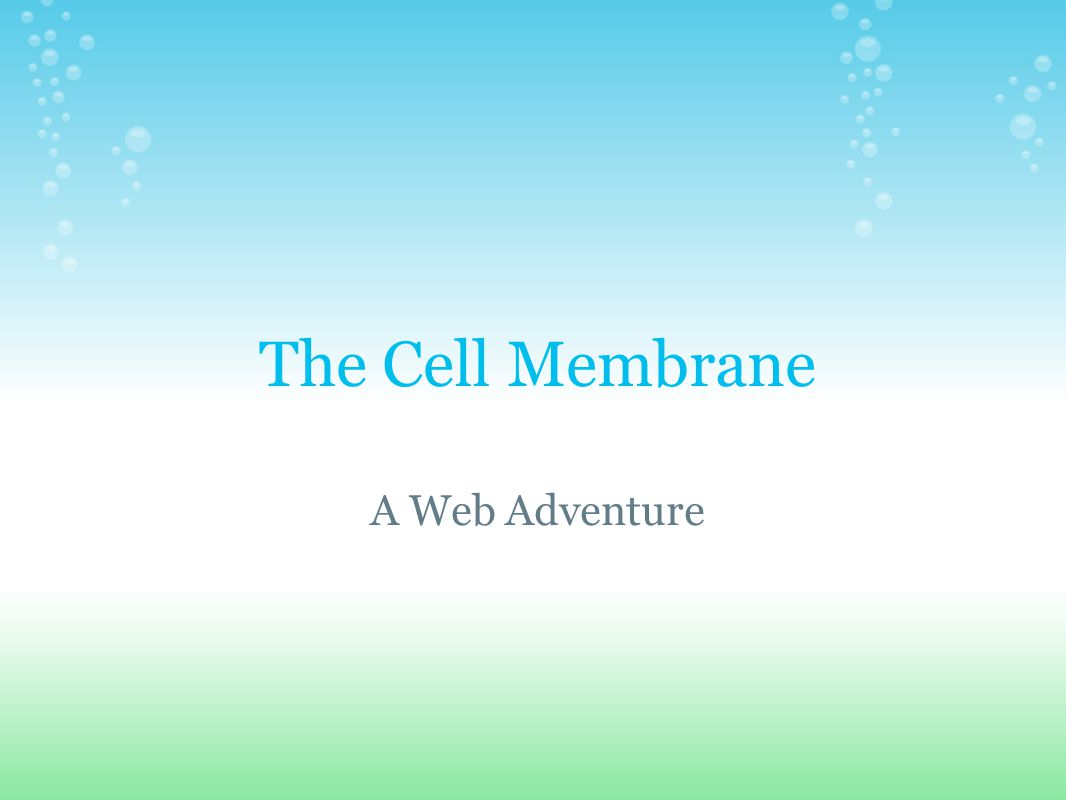 The Cell Membrane A Web Adventure