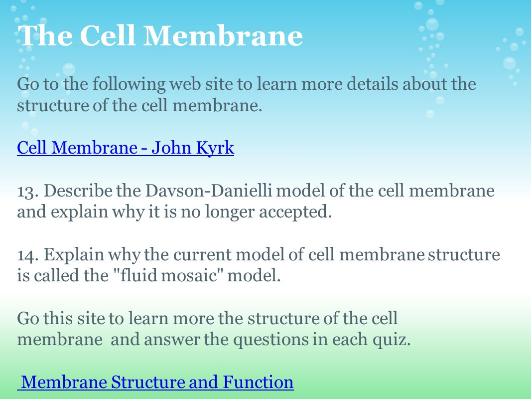 The Cell Membrane Go to the following web site to learn more details about the structure of the cell membrane.