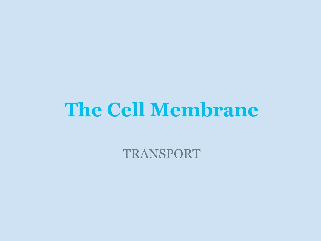 The Cell Membrane TRANSPORT