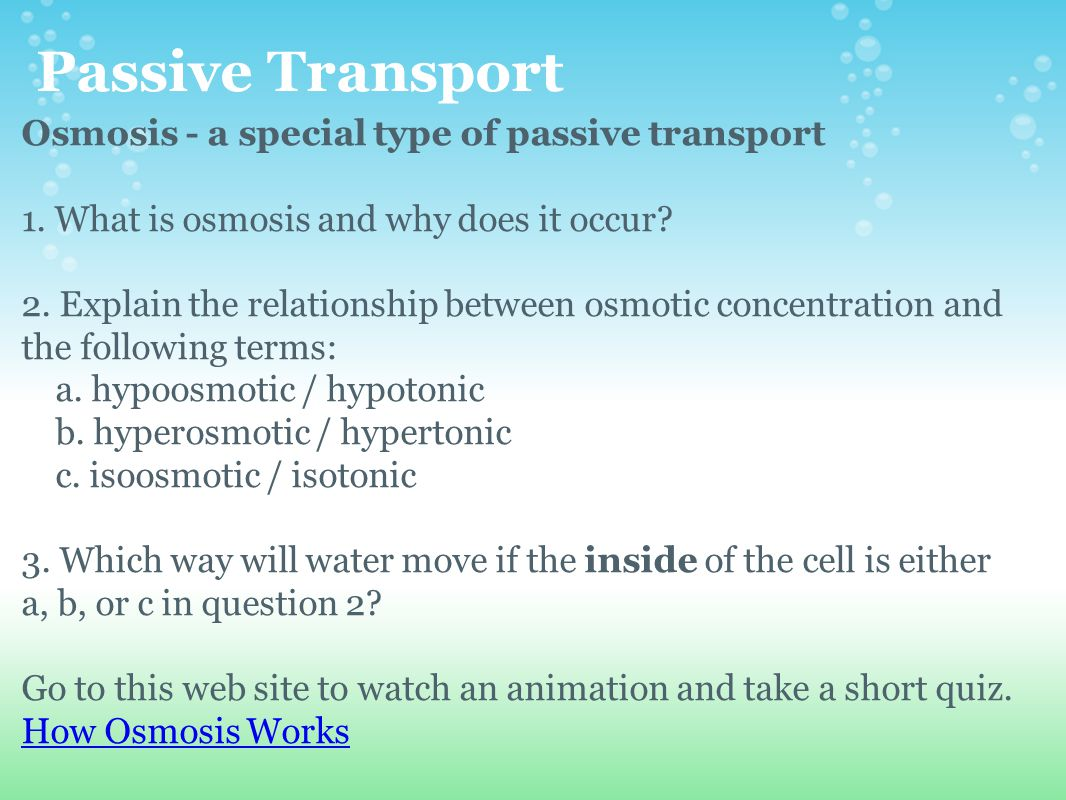 passive transport taking the easy