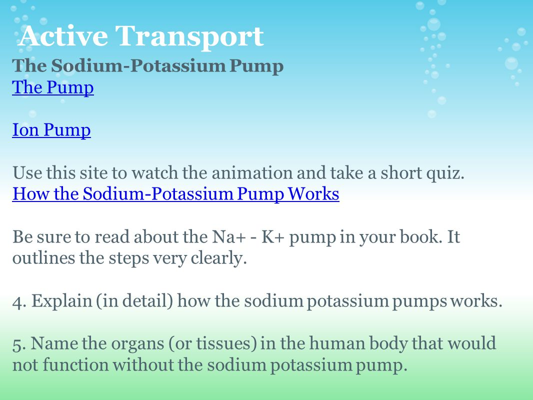 Active Transport The Sodium-Potassium Pump The Pump Ion Pump