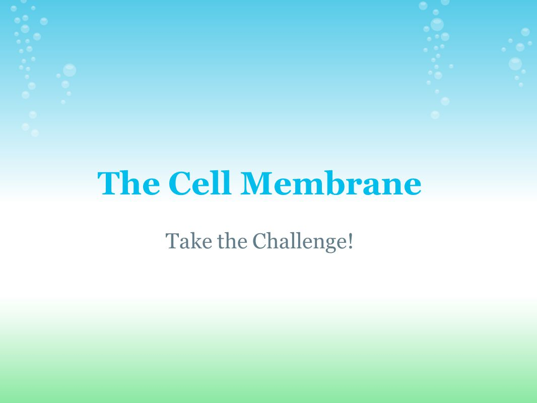 The Cell Membrane Take the Challenge!