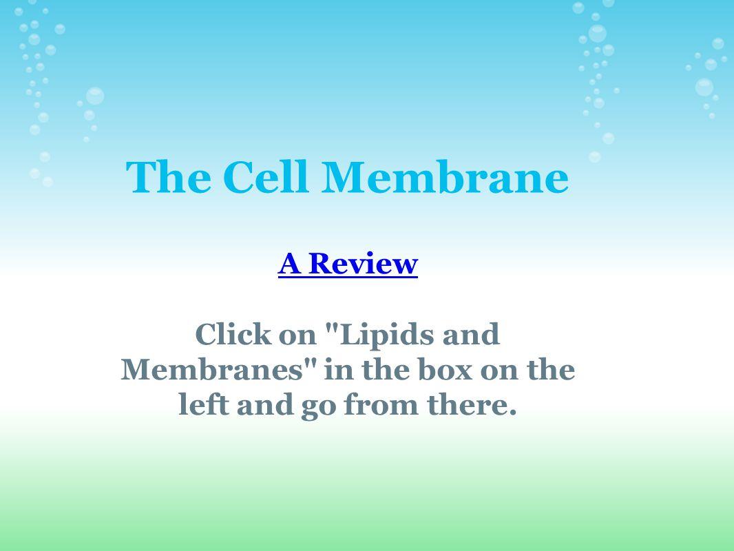 The Cell Membrane A Review