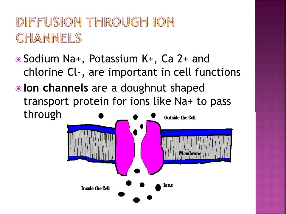 Diffusion Through Ion Channels