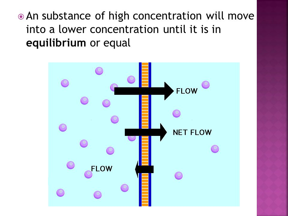 An substance of high concentration will move into a lower concentration until it is in equilibrium or equal