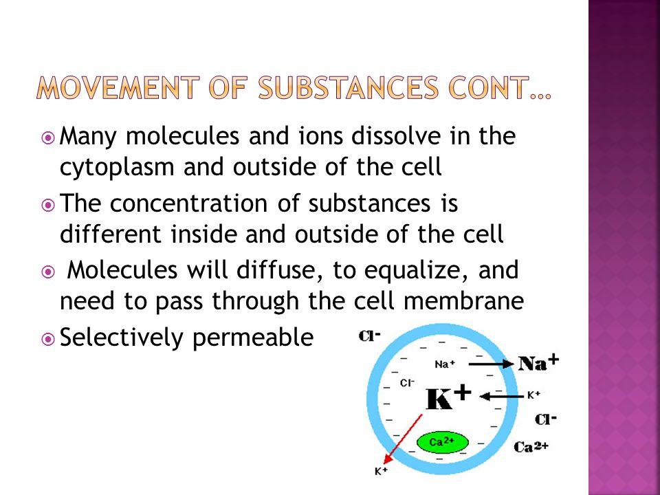 Movement of substances cont…